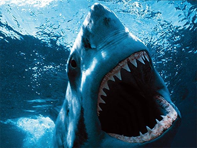 Gregori Klosman - Jaws