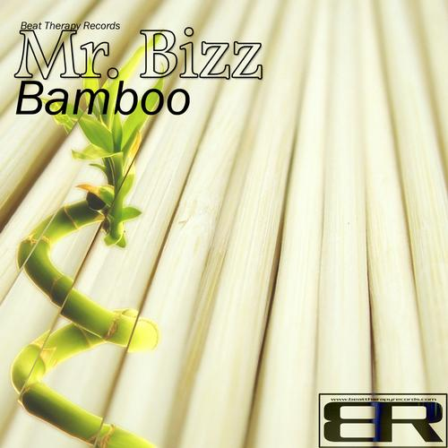 TECH TUESDAYS: Mr Bizz - Bamboo