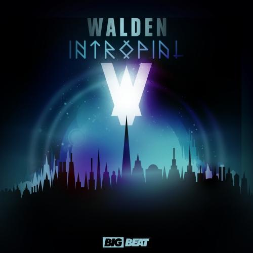 Walden Intropial
