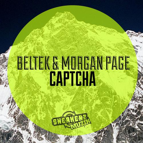 7125905 Beltek & Morgan Page   Captcha