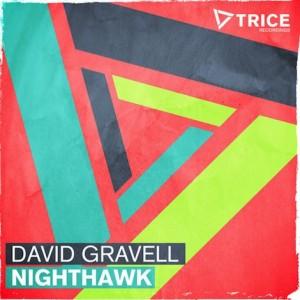 david-gravell-nighthawk-300x300